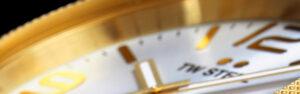 Cabecera relojes Tw Steel Canteen Bracelet